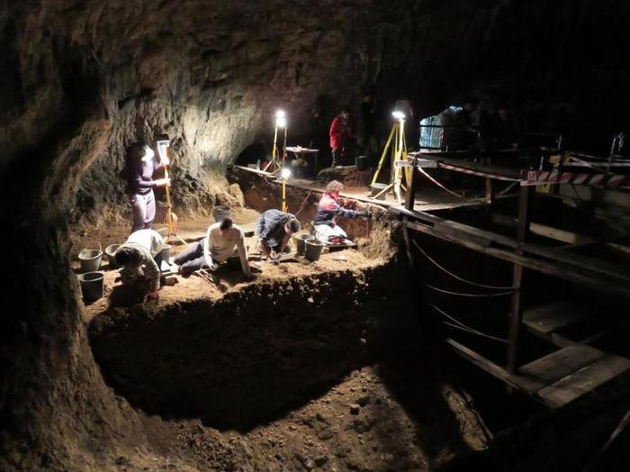В Польше нашли детские кости, которым около 115 тысяч лет. Ученые утверждают, что этого ребенка съела и переварила гигантская птица Польша, Кости, Археология, Ученые