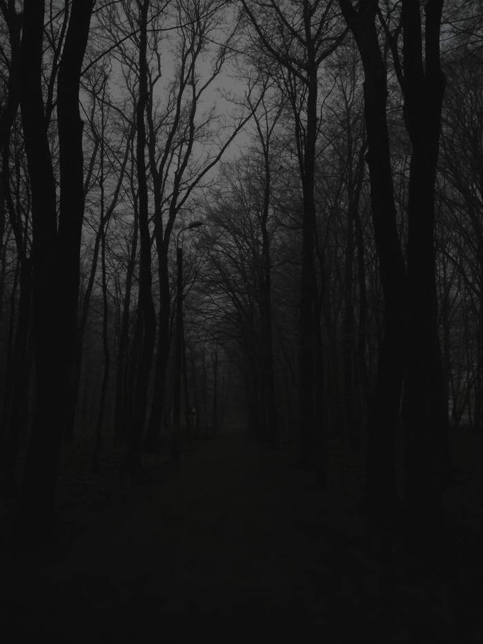 50 оттенков мрачного Черно-Белое фото, Мрак, Фото на тапок