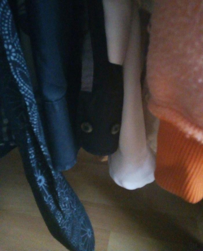 Искал кота, открыл шкаф, уже обрадовался...