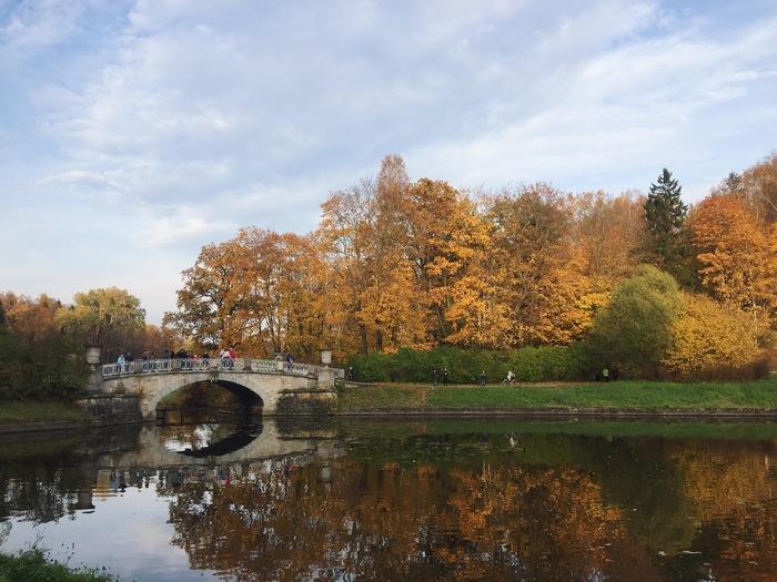 Осень в Павловске. Фотография, Осень, Павловск, Санкт-Петербург, Длиннопост