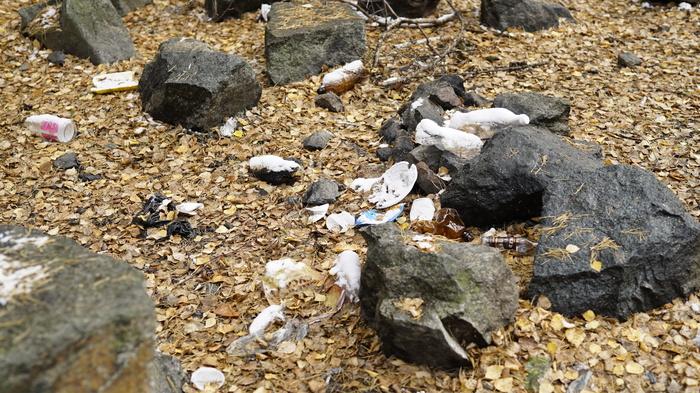 Челябинские чистомены провели уборку в городском бору. Челябинск, Лес, Уборка, Мусор, Чистомен, Длиннопост