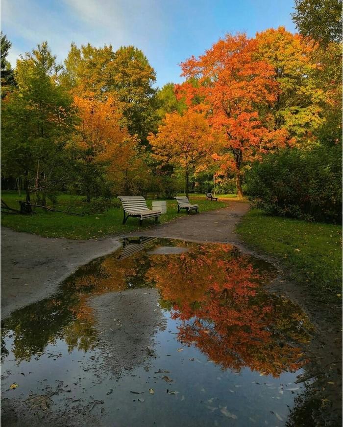Осень на Крестовском острове.