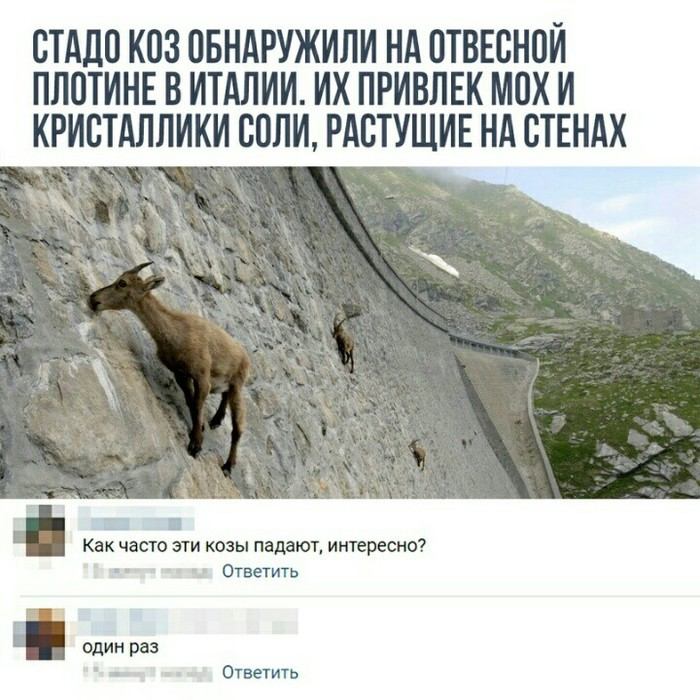 Как часто они падают? Картинки, Комментарии, ВКонтакте, Пикабу-Вк-Пикабу