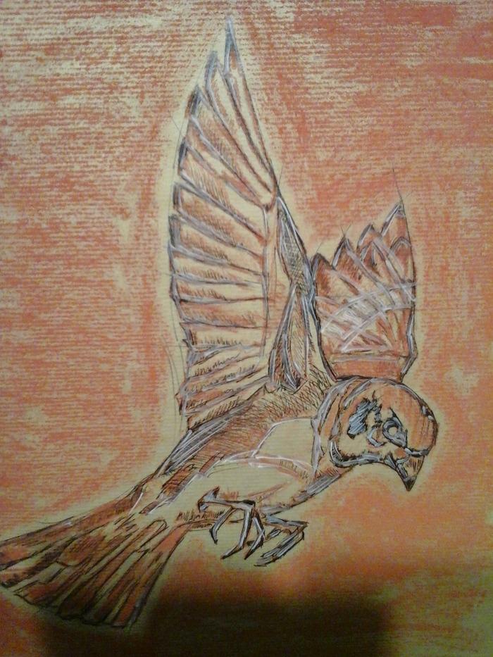 Птиц Лига художников, Тушь, Сангина, Рисунок, Птицы
