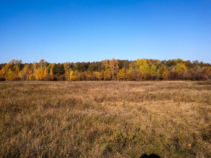 Дорога в осень Дзержинск, Велосипед, Видео, Youtube, Мобильная фотография, Природа, Длиннопост