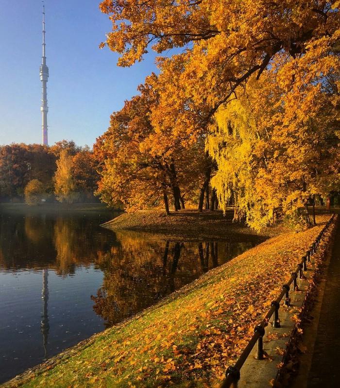 """Осень в парке """"Останкино"""""""