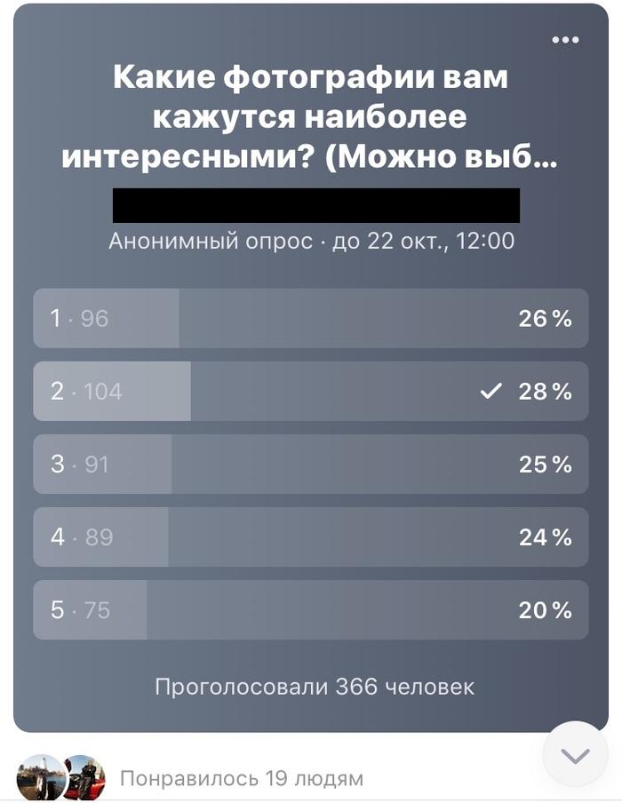 Я все понимаю, но этого не понимаю Текст, Чет падазрительна, Голосование, ВКонтакте