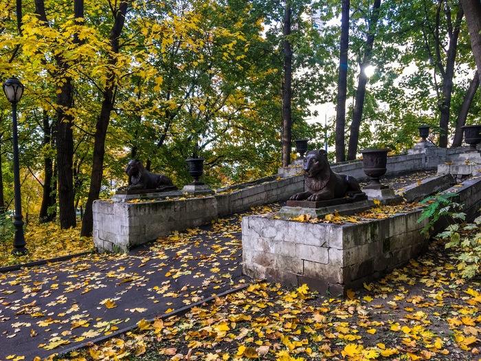 Парк и кадры из фильма «Покровские ворота» (1983) Покровские ворота, Советское кино, Осень, Парк, Ностальгия, Кадр, Фильмы, Москва, Длиннопост