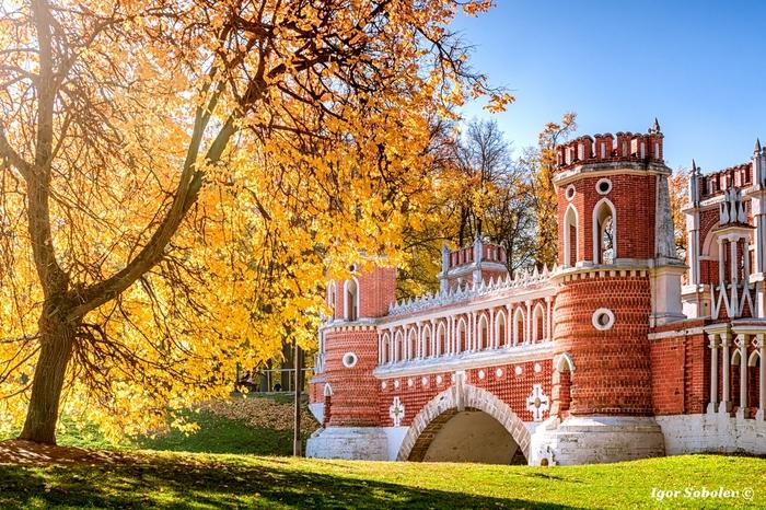 Осень в Царицыно Царицыно, Москва, Осень, Фотография