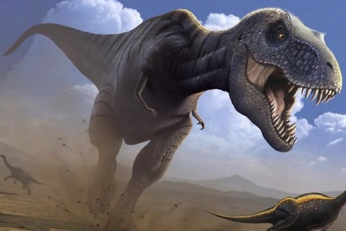 Тираннозавры: ученые показали, как они выглядели на самом деле Палеонтология, Наука, Тираннозавр, Внешний вид, Длиннопост