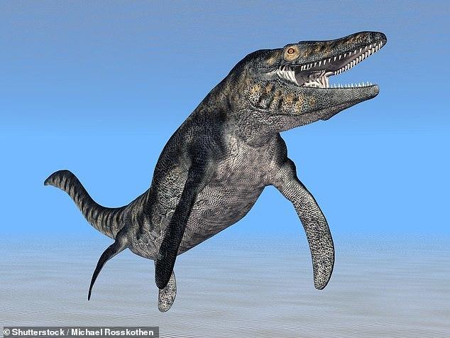 Мозазавры охотились так же, как это делают косатки Палеонтология, Наука, Пресмыкающиеся, Животные, Биология, Длиннопост