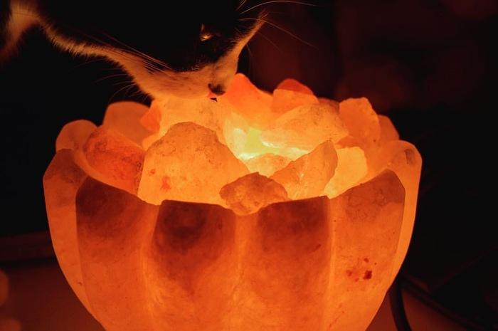 Изучение солевой лампы