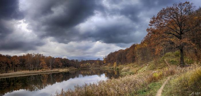 Осень в объективе OnePlus 3 Начинающий фотограф, Осень, Мобильная фотография, Oneplus, OnePlus 3, Лес, Парк, Длиннопост