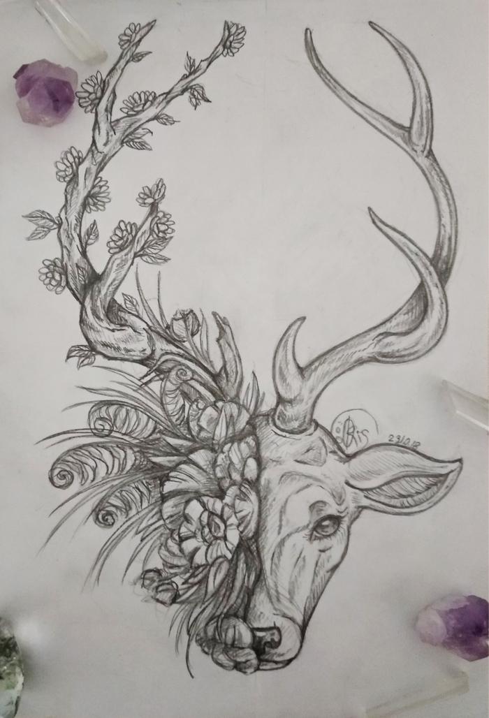 Олень и вечность... Рисунок, Простой карандаш, Олень, Цветы, Травы, Рога, Папоротник, Ветка