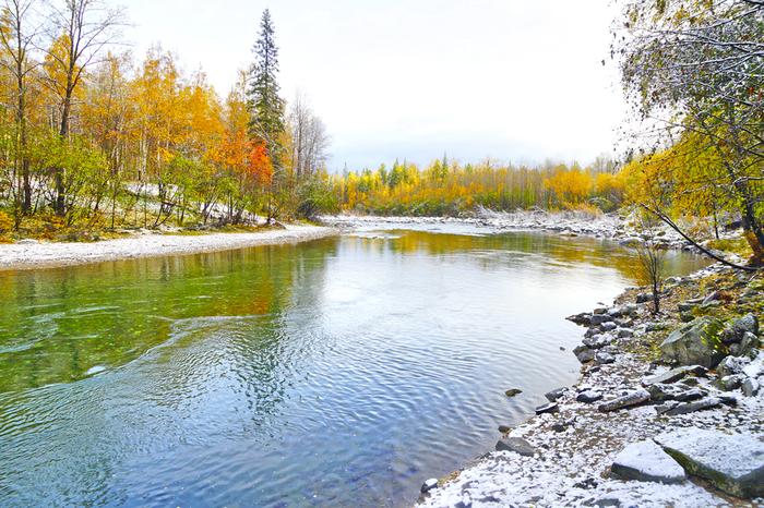 Золотая осень на реке Утулик, озеро Байкал Байкал, Байкальск, Утулик, Фотография, Природа, Пейзаж, Осень, Длиннопост