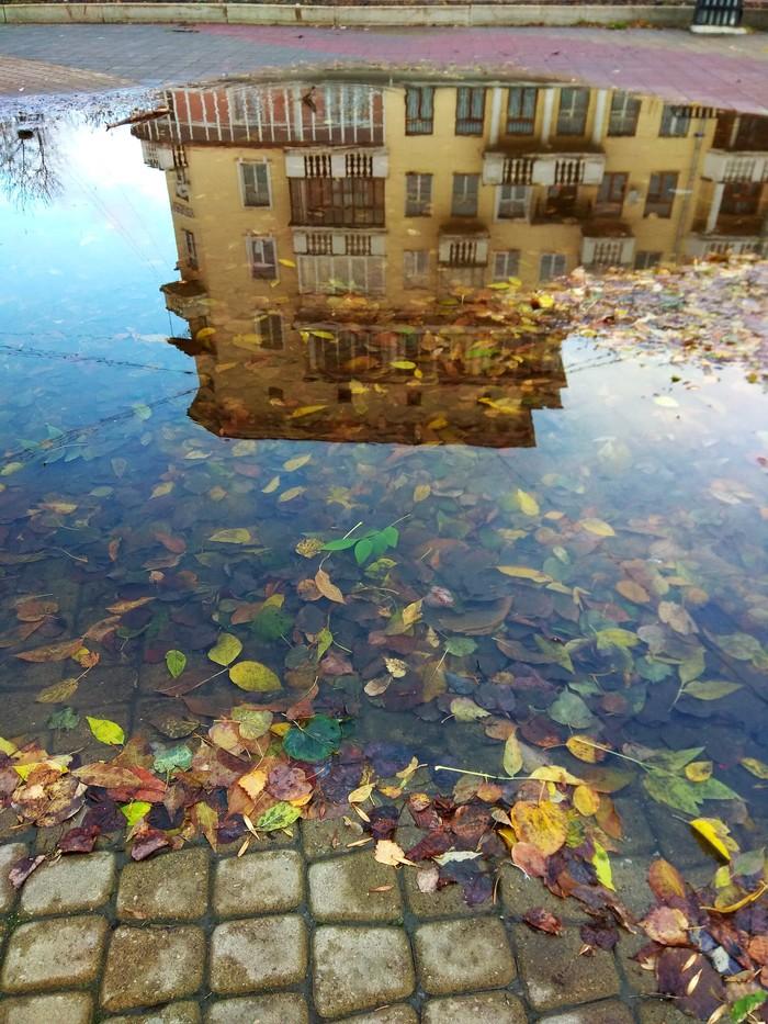 Отражение. Пятничный тег моё, Осень, Уралмаш, Фотография, Лужа, Цитаты, Длиннопост