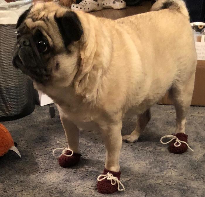 А где еще носок ?