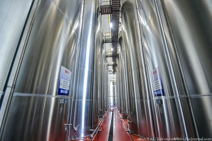 Как делают вино. Часть 4 Вино, Виноград, Длиннопост, Сельское хозяйство, Виноградник