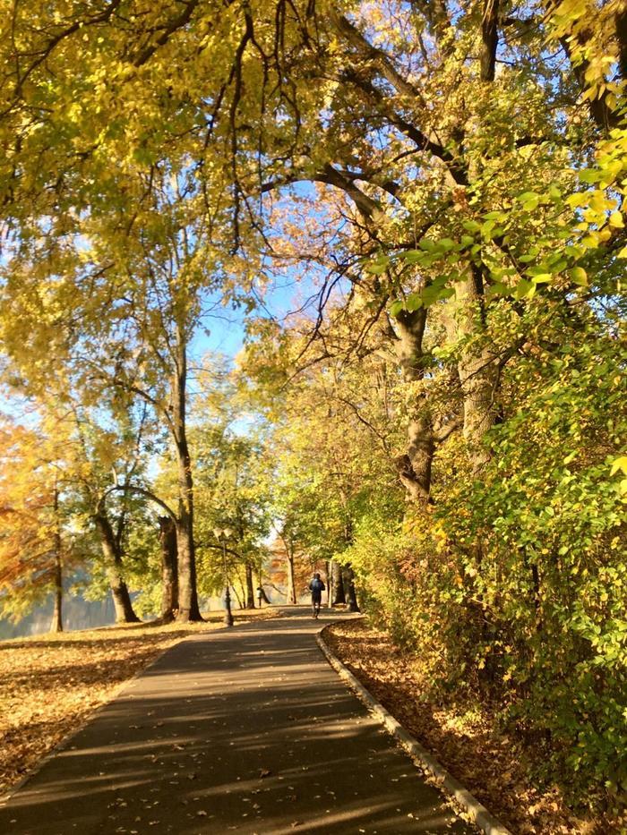 Осень в Бухаресте Осень, Городские пейзажи, Бухарест, Румыния, Фотография, Длиннопост