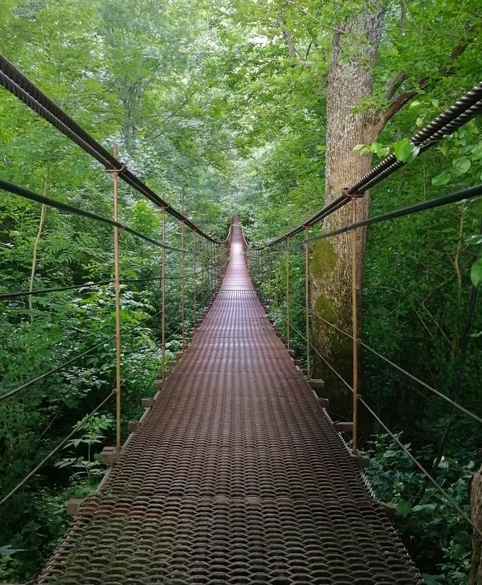 Подвесной мост