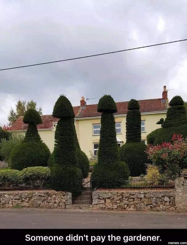 Мстя садовника Сад, Садоводство