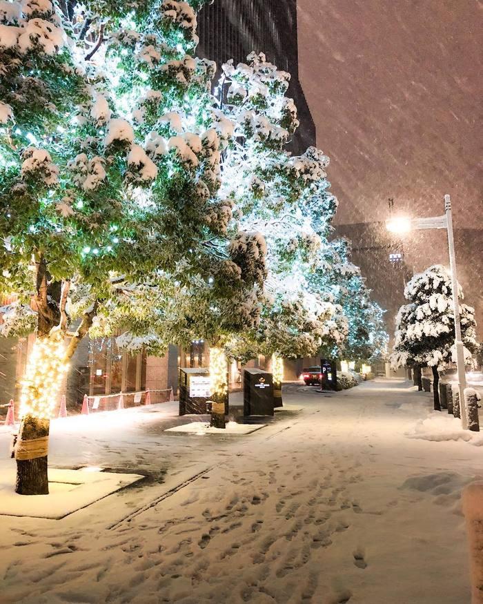 Токио зимой Токио, Япония, Зима, Снег, Длиннопост