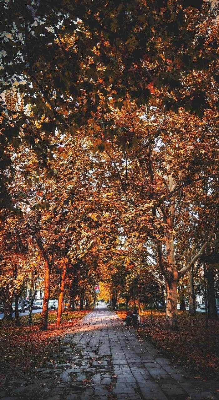 Осень Осень, Фотография, Фотошоп мастер, Городские пейзажи