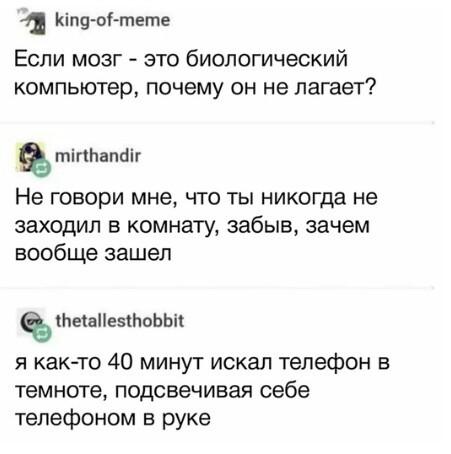 Лаги мозга