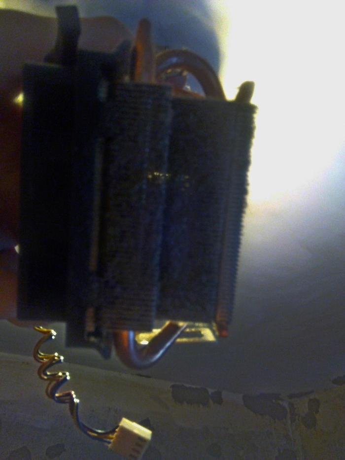 Пыль в радиаторе процессора Процессор, Пыль, Очистка, Радиатор, ПК, Длиннопост