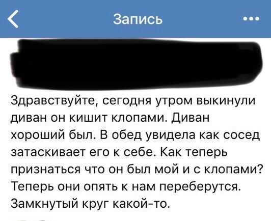 Занимательная история про диван. Диван, Клопы, ВКонтакте, Длиннопост, Скриншот
