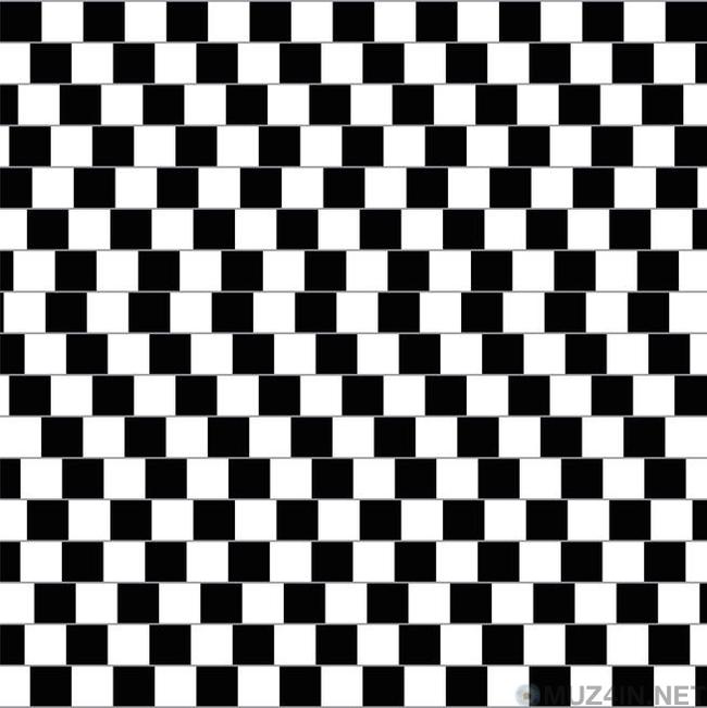 13 оптических иллюзий, которые взорвут ваш мозг Факты, Оптические иллюзии, Интересное, Обман зрения, Познавательно, Видео, Гифка, Длиннопост