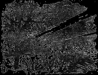 Дорогами большой войны. Случай у реки Урух. Великая Отечественная война, Чтобы помнили, Бм-13, Катюша, Жеребко Дмитрий Кириллович, Длиннопост