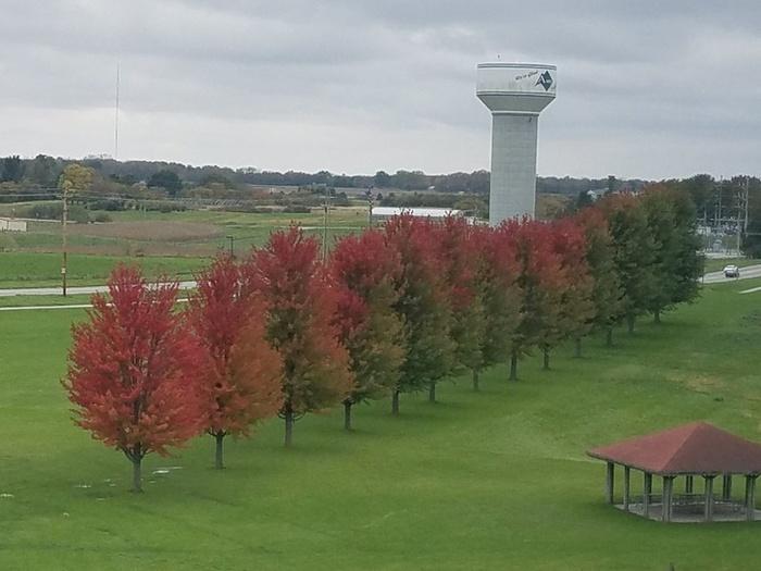 Осень устанавливается в ваш регион. Пожалуйста, подождите Осень, Картинки, Загрузка, Дерево