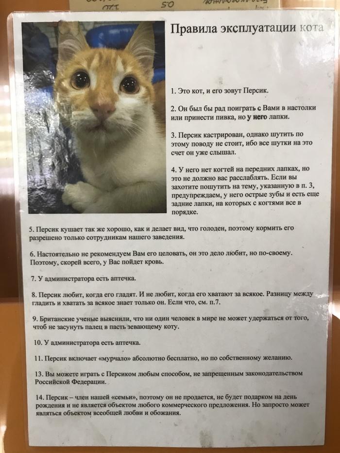 Правила эксплуатации кота