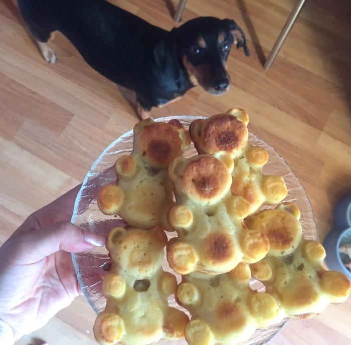 Моя собака надеялась, что это все для нее (наивная) Собака, Вкусняшки, Домашние животные, Готовим дома