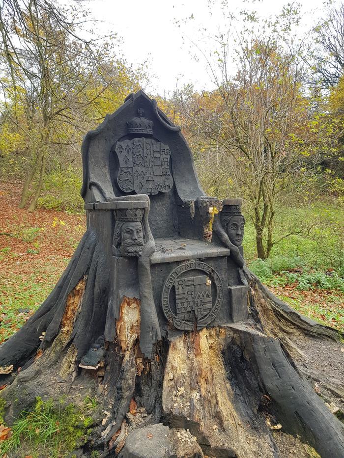 Деревянный трон в английском лесу