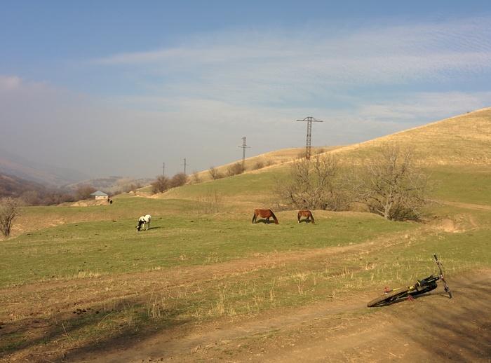Осень в предгорьях Чимгана Покатушки, Велосипед, Узбекистан, Длиннопост