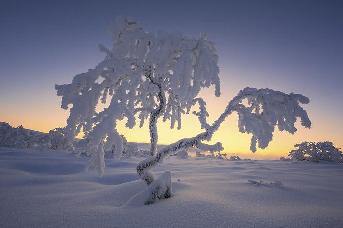 Утро ноября Пейзаж, Природа, Кольский полуостров, Мурманская область, Иней, Длиннопост, Ноябрь