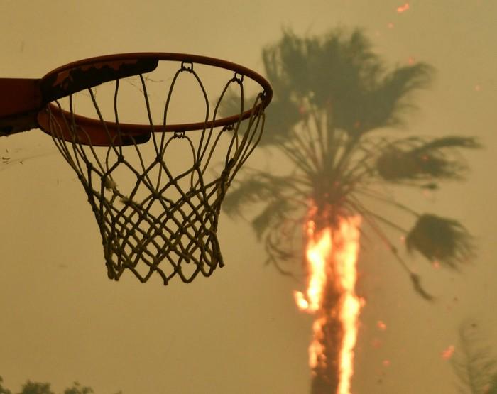 Горящие пальмы в Малибу ( Калифорния, США, 9.11.2018) Природа, Калифорния, Пожар, Америка, США, Фотография, Пальмы, Длиннопост