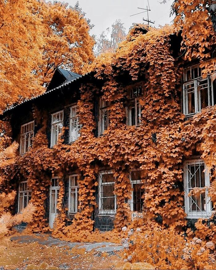 Красивый дом в Нижнем Новгороде.