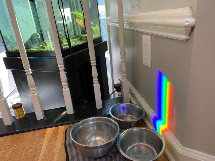 Лучи солнца проходящие через аквариум