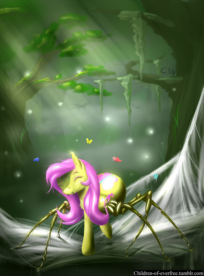 Spidershy My Little Pony, Fluttershy, Spiderpony, Паук