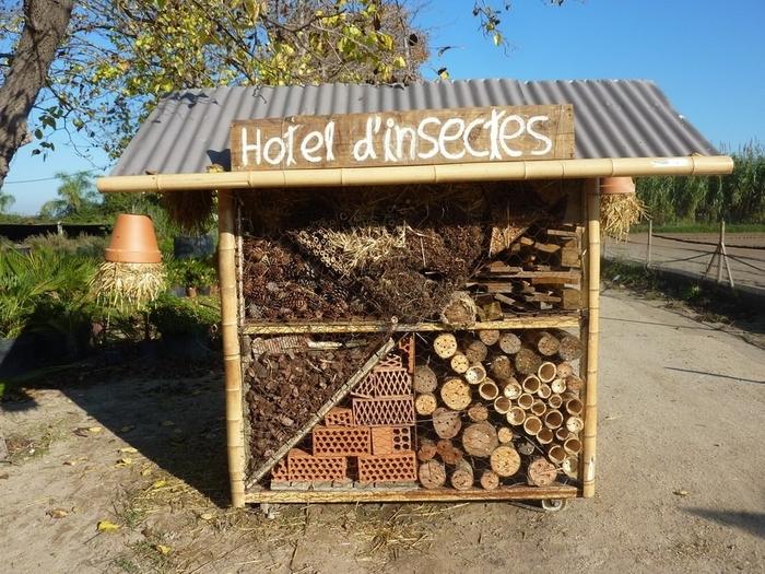 Hotel d'insectes или букашкин домик по-французски. Насекомые, Домик для насекомых, Hotel dinsectes, Франция, Текст, Длиннопост