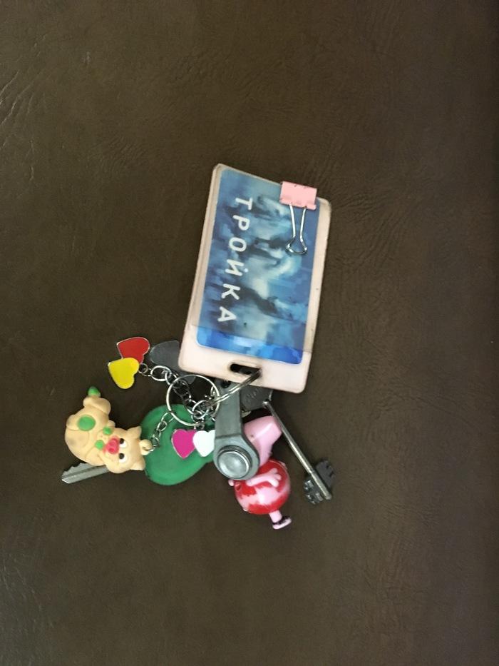 Найдены ключи Ключи, Нашел, Утеря, Зеленая ветка, Свинка пеппа, Проездной, Москва, Без рейтинга