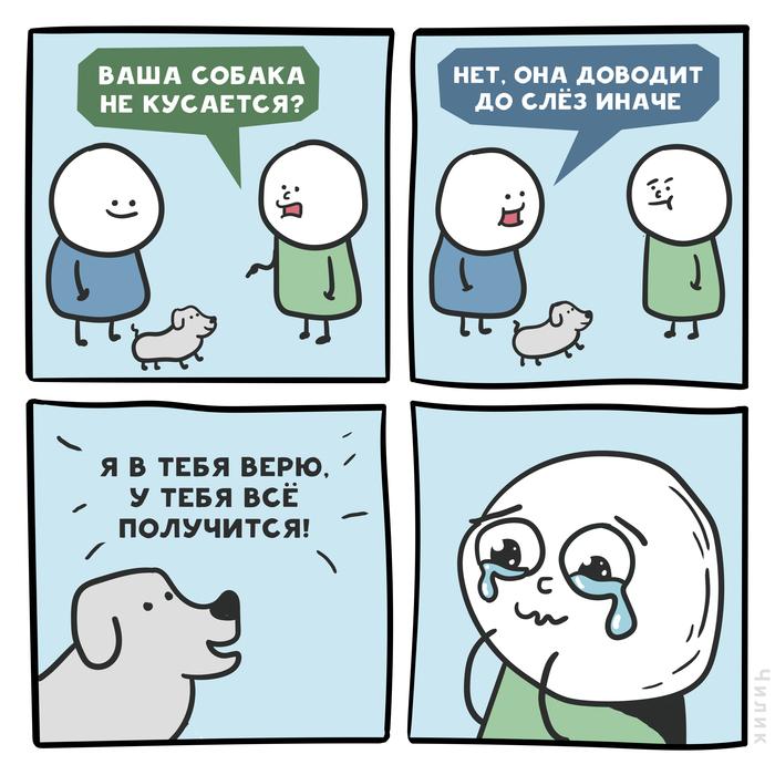 Коварная собака