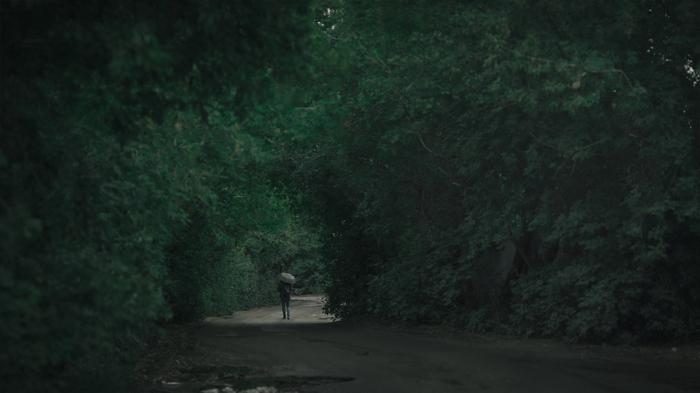 Тихой дорогой... Canon 600D, Советская оптика, Юпитер-37, Панорама, Омск, Фотография, Зелень