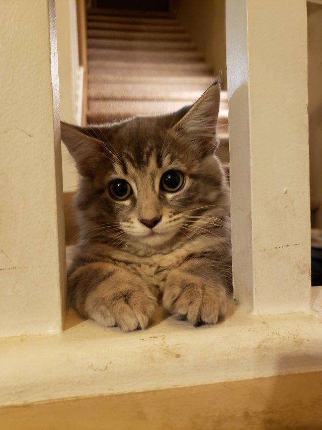 Доброе утро! Я ждал тебя.
