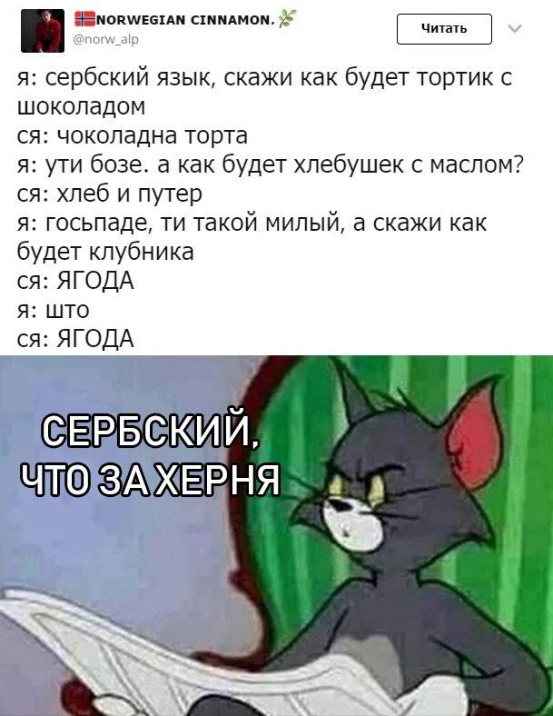 Сербский,че за херня???