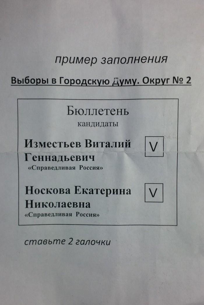 Выборы: инструкция по применению Политика, Выборы, Агитация, Политтехнологии, Длиннопост