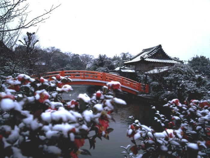 Зима в Японии[2] Япония, Зима, Снег, Фотография, Длиннопост